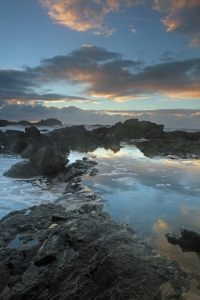 Rock_pool_north_sawtell_beach_3
