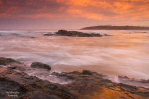 Arrawarra_Headland_6