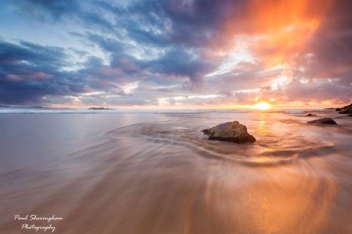 Dog_Beach_6.jpg